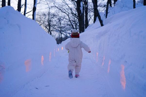 ライトアップされた雪の道
