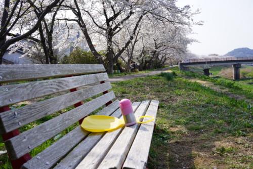 いわき市新川の土手のベンチ