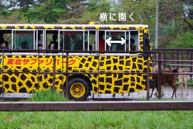 東北サファリパークの窓が横に開くバス