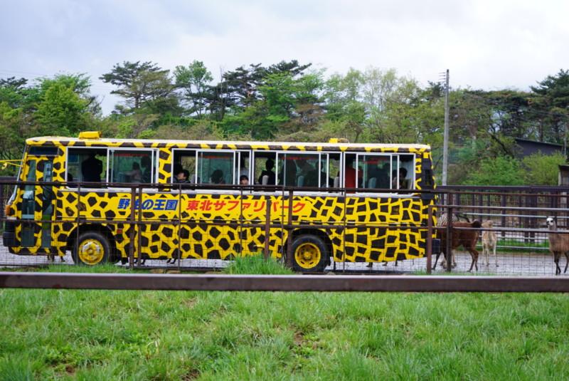 東北サファリパークの乗合園内バス