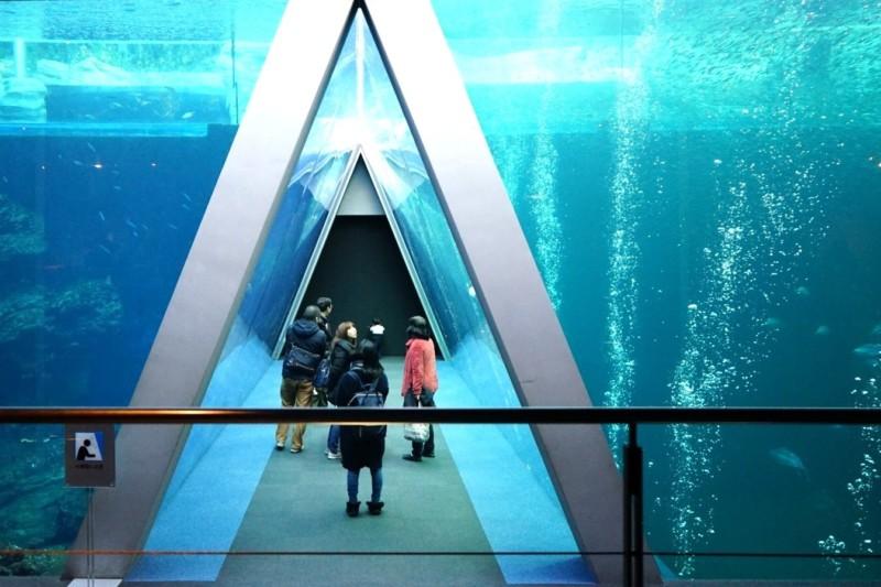 アクアマリンふくしまのメインの大水槽