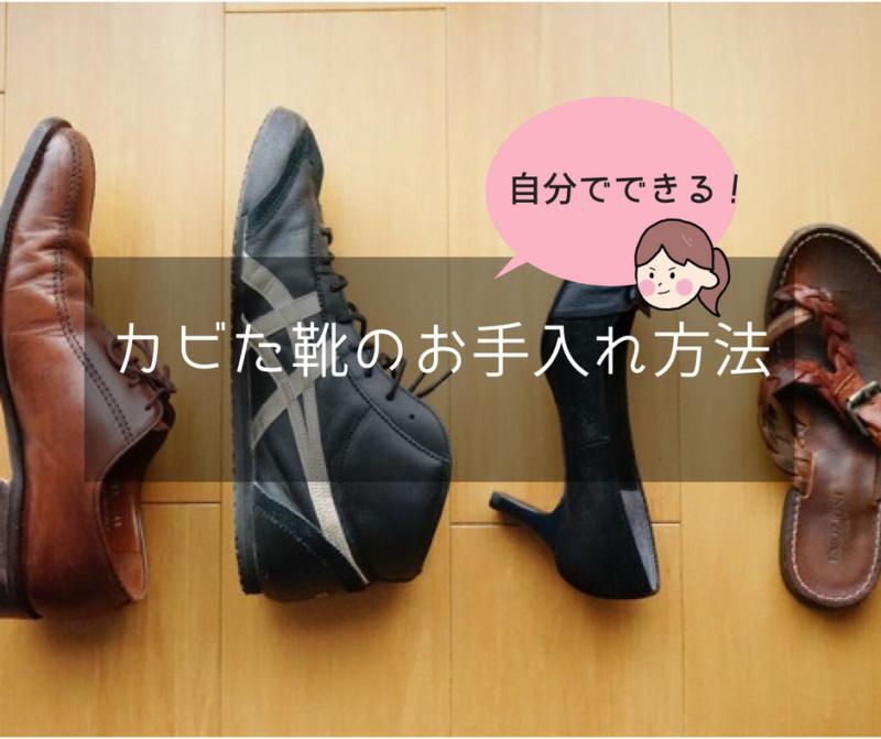 自分でできるカビた靴のお手入れ方法