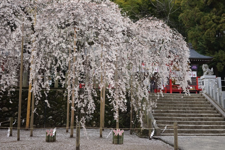 福島県いわき市 小川諏訪神社