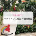 子供が喜ぶ!ハワイアンズ周辺の観光レジャー施設をタイプ別に紹介
