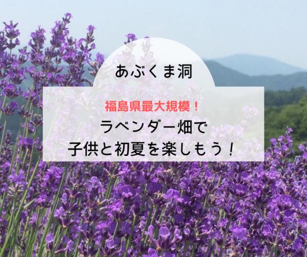 福島県最大規模のあぶくま洞ラベンダー畑で子供と初夏を楽しもう!