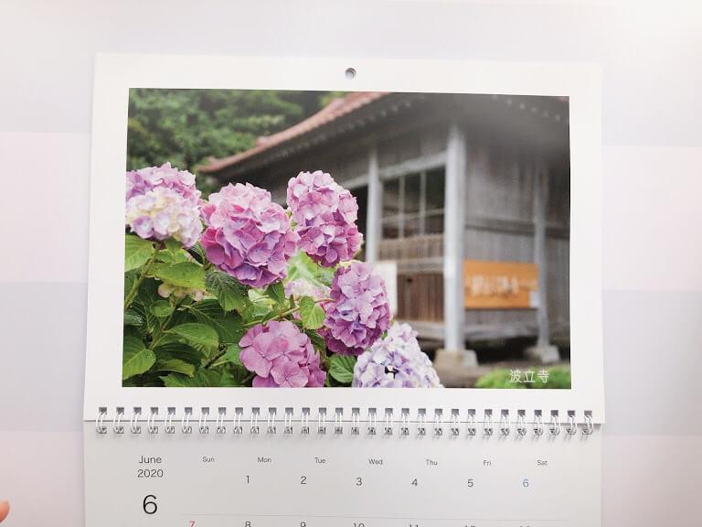 カレンダー 6月の写真