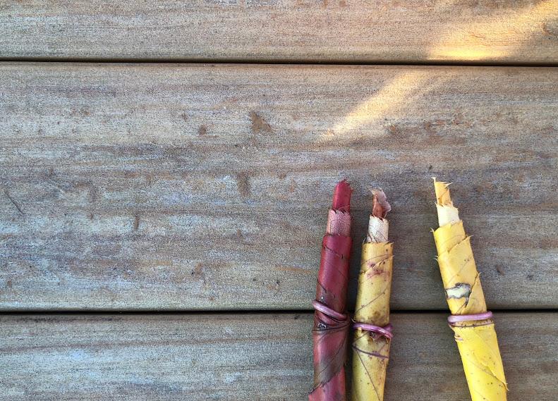 落ち葉で作った鉛筆
